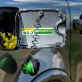 Biodisel: energie rinnovabili e motori